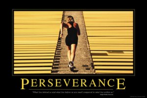 Persevere and Attain !!!