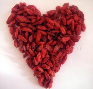 Go - GO Goji Berries !!