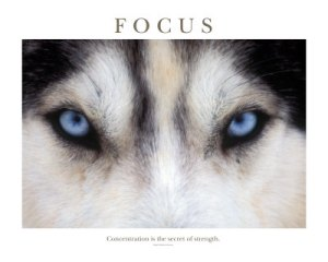 ~ Focus is Power ~